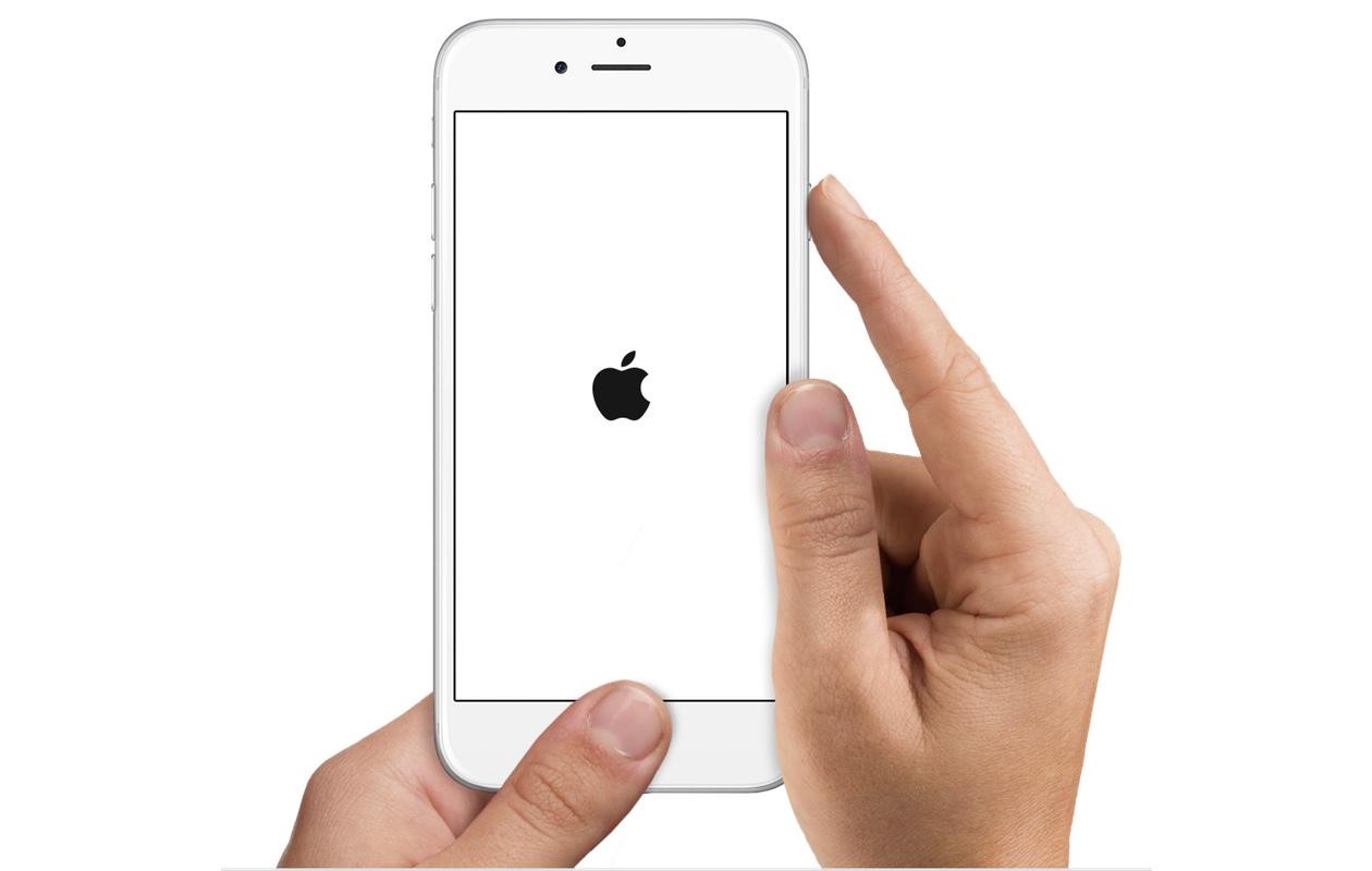 Как сделать шарлотку из яблок с фото