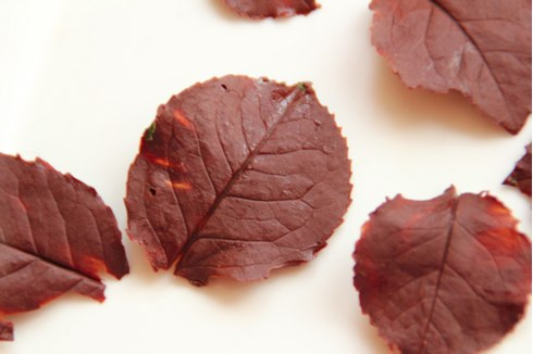 chocolate leaves6
