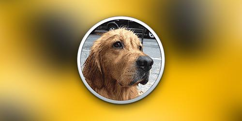 Плагин Bark для Growl: Обязателен к установке