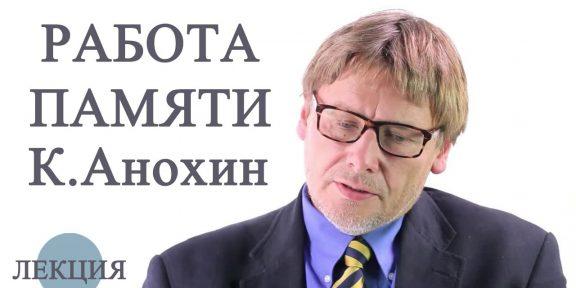 Лекция Константина Анохина о том, как работает наша память