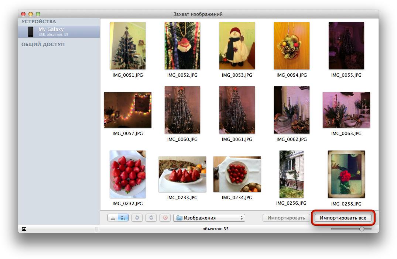 как скопировать много фото с сайта себе компанию