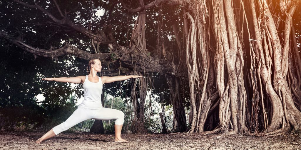 Простые асаны йоги для начинающих: базовые упражнения в домашних условиях