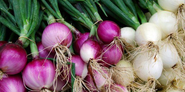 Как вырастить дома репчатый лук