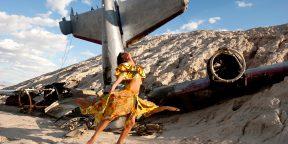 Как выжить в авиакатастрофе: 5 важных фактов