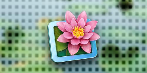 LilyView для OS X: Просмотр картинок в стиле предельного минимализма