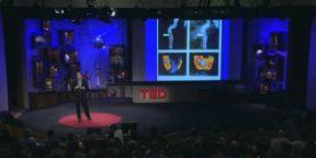 Как здоровый образ жизни изменяет нас на клеточном уровне?