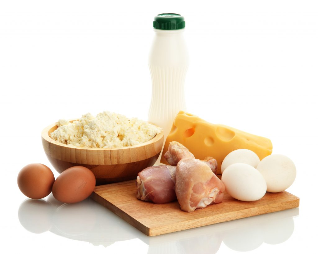 Картинка еды белков