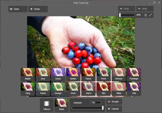 Pixlr Touch Up - офлайновый редактор графики для Google Chrome