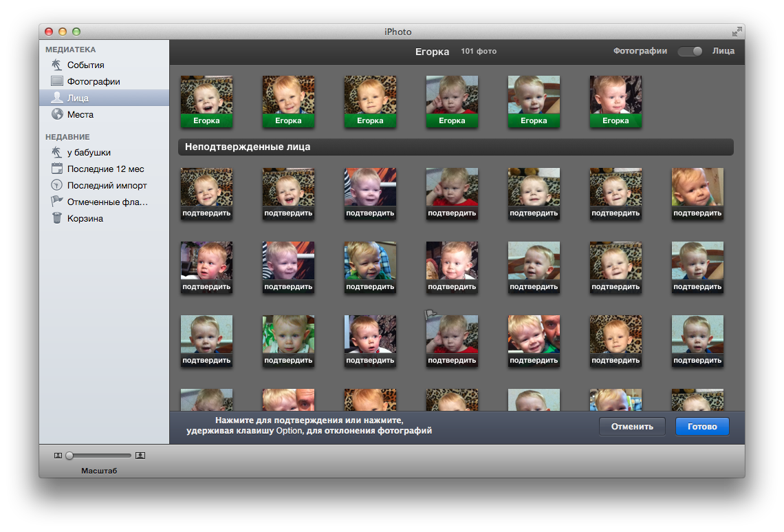 в каком приложении можно хранить фотографии история крепкой семьи