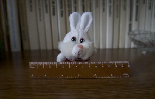 Как избавиться от «синдрома Белого Кролика»