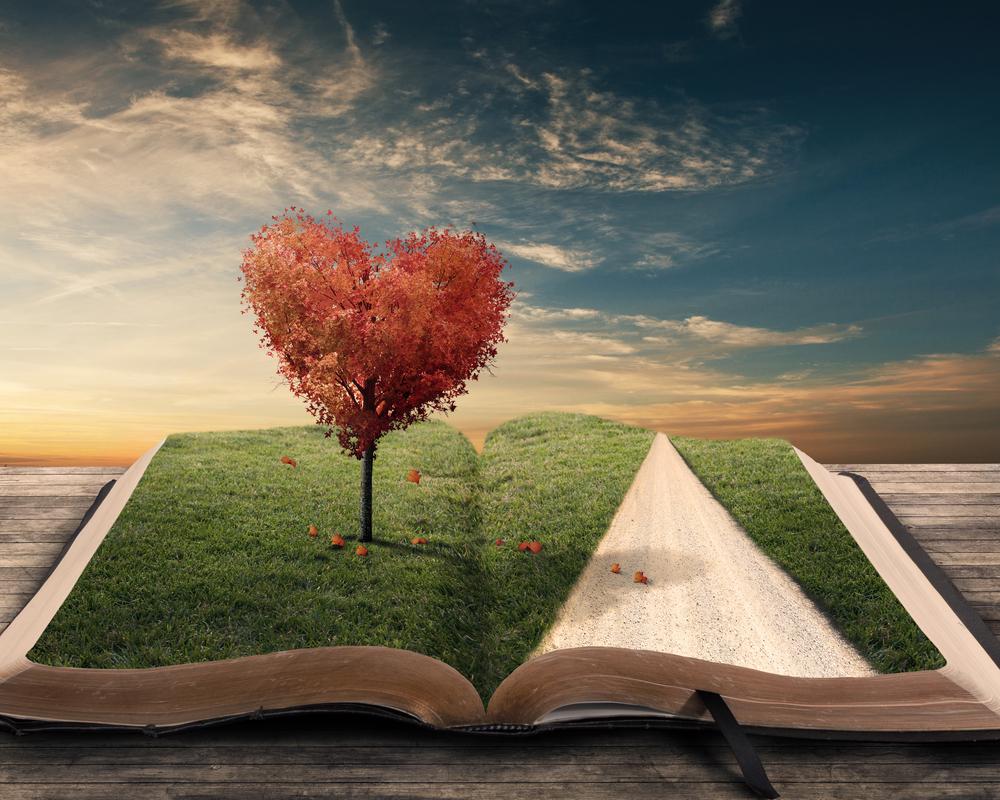 Лучшие книжные советы и лайфхаки