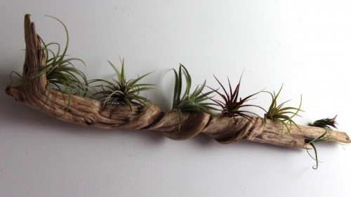 cool-driftwood-crafts-for-home-decor3