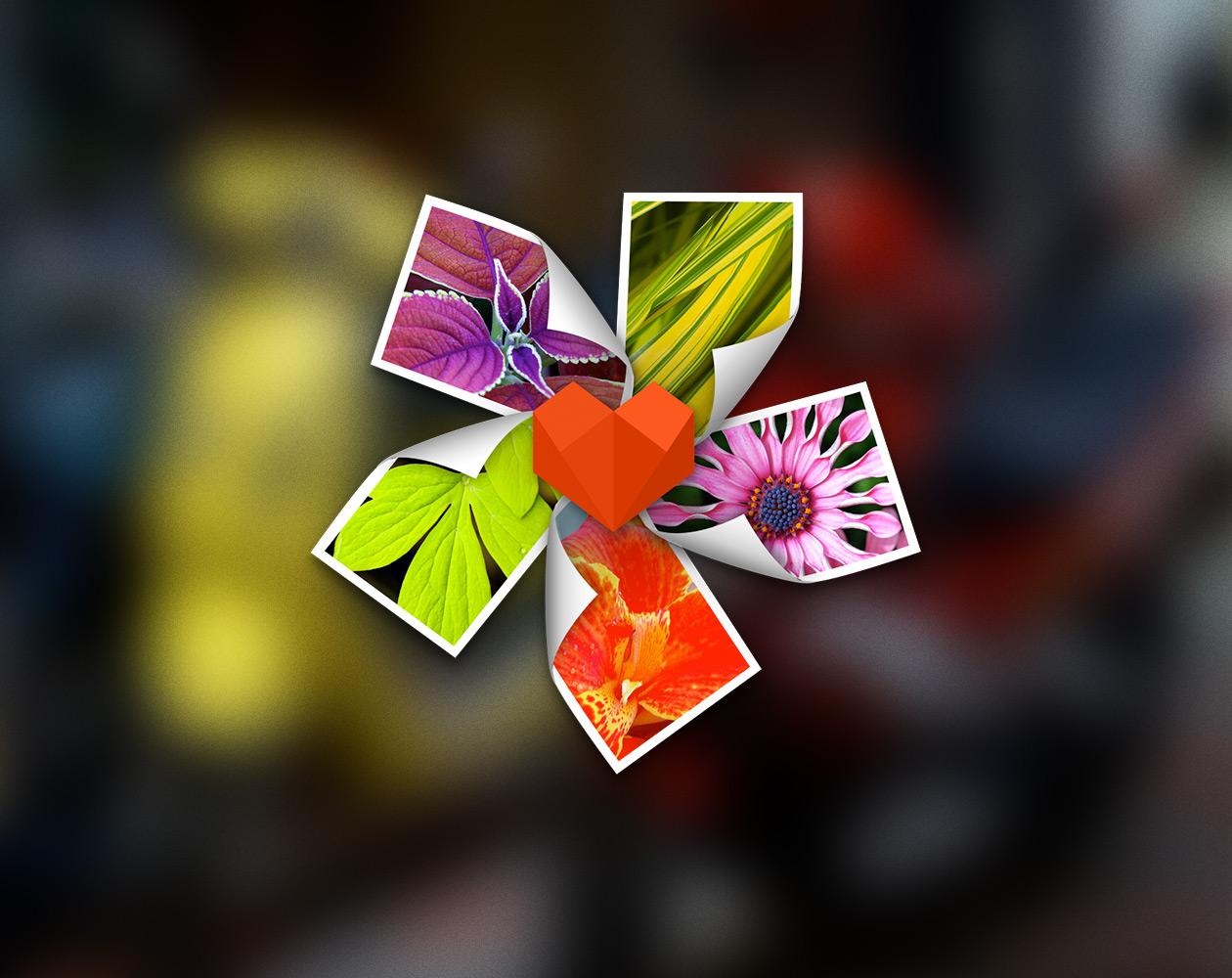 ArcSoft Photo+ для Mac: как Просмотр, только лучше (временно бесплатно)