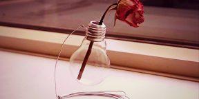 Как сделать вазу из перегоревшей лампочки