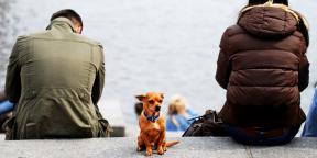 Современное расставание: 5 причин закончить отношения