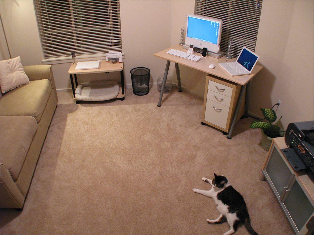 Советы Лео Бабауты: как избавиться от хлама в квартире