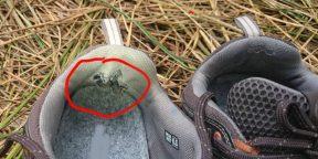 Как продлить жизнь кроссовкам