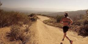 10 профилей Instagram известных бегунов и триатлетов, на которые вам обязательно стоит подписаться