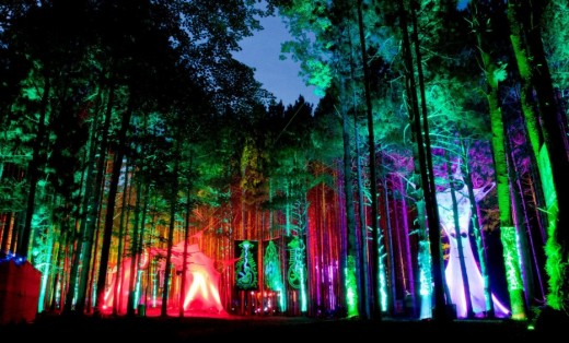 Electric Forest Music Festival - Rothbury, Michigan