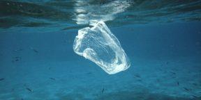 Пластик убивает планету. Используйте эти 14 способов, чтобы сократить его потребление