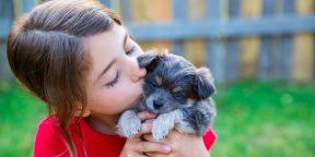 Какие собаки хорошо ладят с детьми