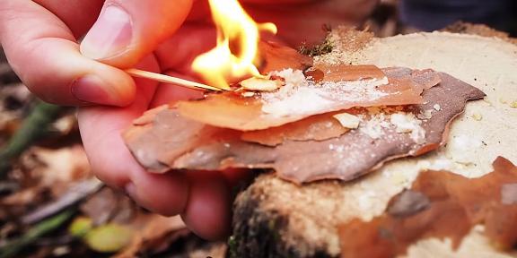 Как разжечь костёр без бумаги