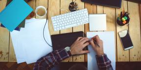 10 советов начинающим писателям от Энн Ламотт