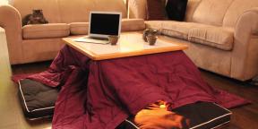 Согреваемся по-японски с тёплым столом котацу