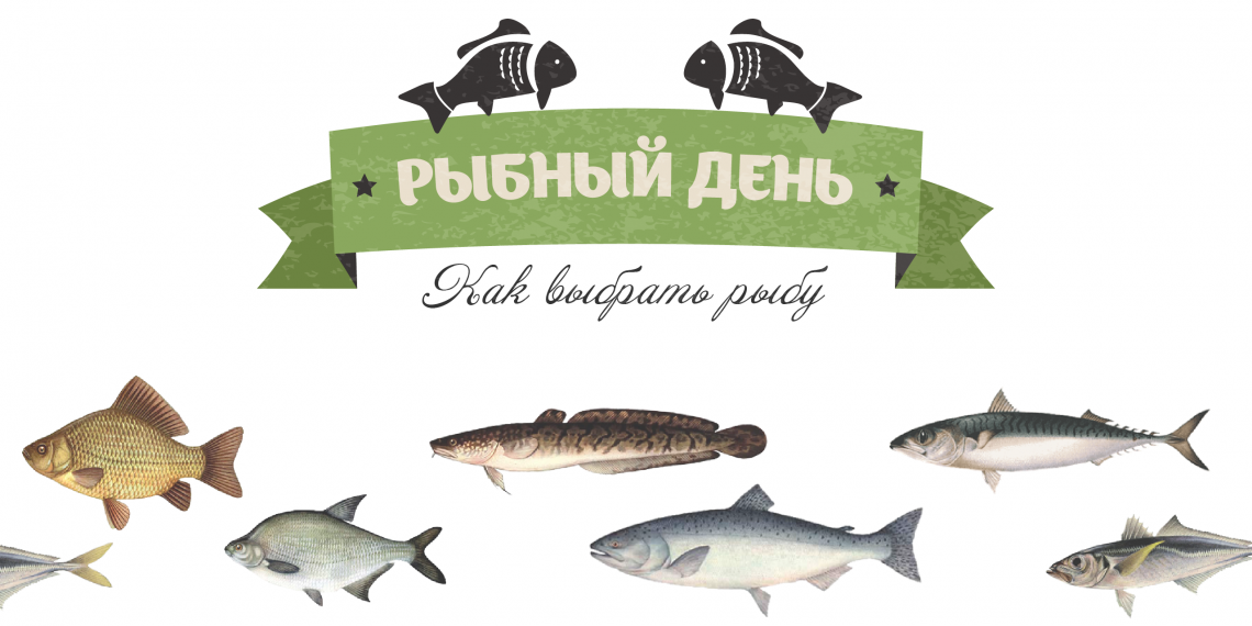 ИНФОГРАФИКА: Как выбрать рыбу