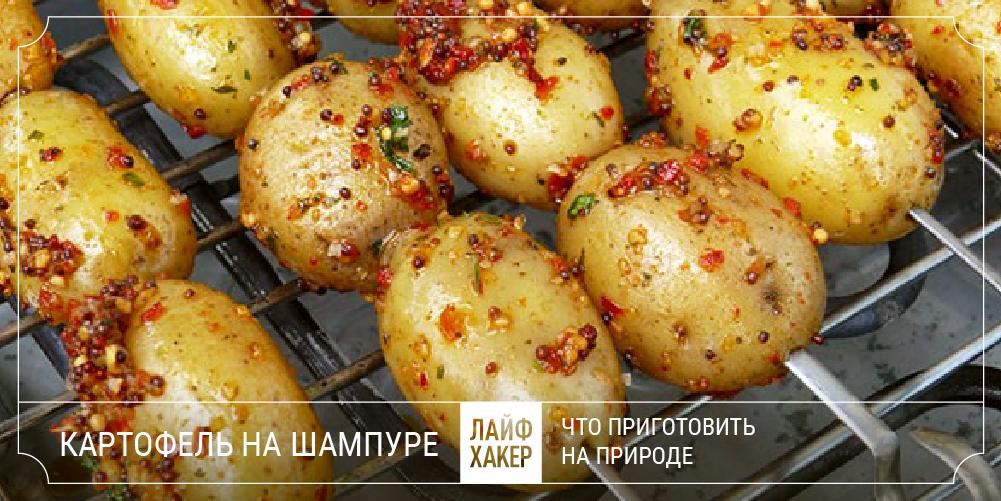 Блюда на мангале лучшие рецепты приготовления с фото