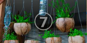 7 способов использовать пластиковые бутылки в саду
