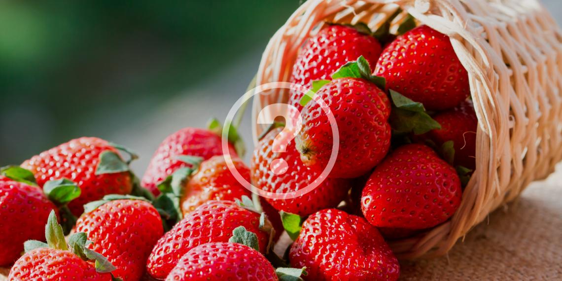 Как сохранить клубнику в свежем виде