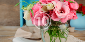 10 советов, как продлить жизнь свежесрезанных цветов