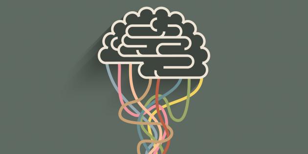 Как повысить интеллект: 10 работающих способов