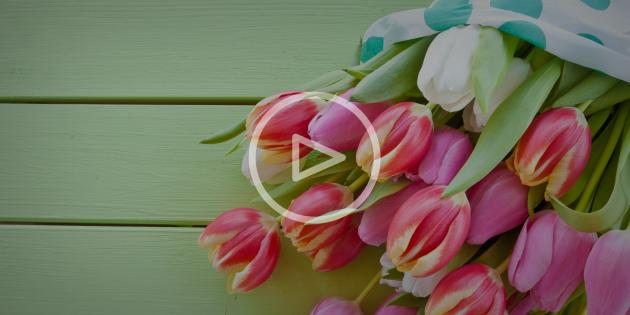 Как продлить жизнь свежих цветов