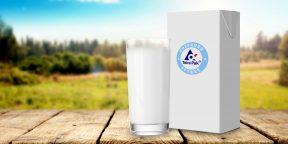 Откуда берётся молоко: правда и мифы о его производстве