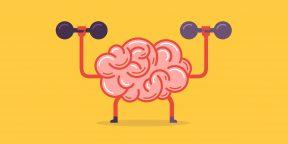 4 привычки, которые превратят вас в гения