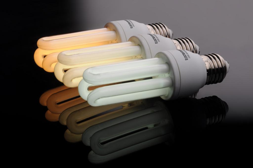Где сдать энергосберегающие лампы в москве