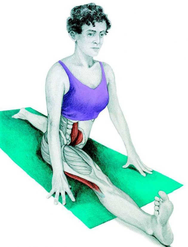 Анатомия стретчинга: продольный шпагат
