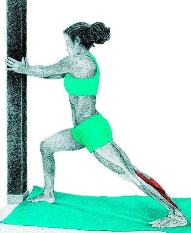 Анатомия стретчинга: растяжка икр