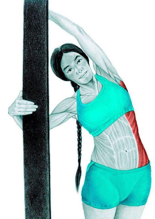 Анатомия стретчинга: боковой наклон к стене