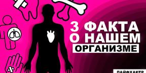 3 удивительных факта о нашем организме