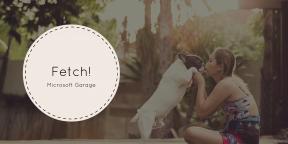 Fetch — новинка от Microsoft, которая подберёт вам собаку по вашему фото