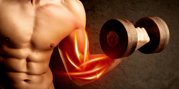 4 сайта, которые помогут накачать бицепс, грудь, пресс и другие части тела