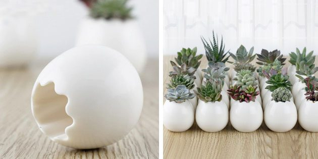 горшки в виде яиц с Aliexpress домашний сад