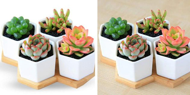 Керамические горшки для цветов с Aliexpress домашний сад