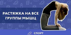 ВИДЕО: Самые эффективные упражнения для растяжки мышц