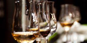 Вино: как выбрать, из чего пить, с какой едой сочетать
