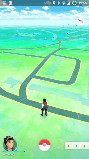 где и как искать покемонов в Pokemon Go