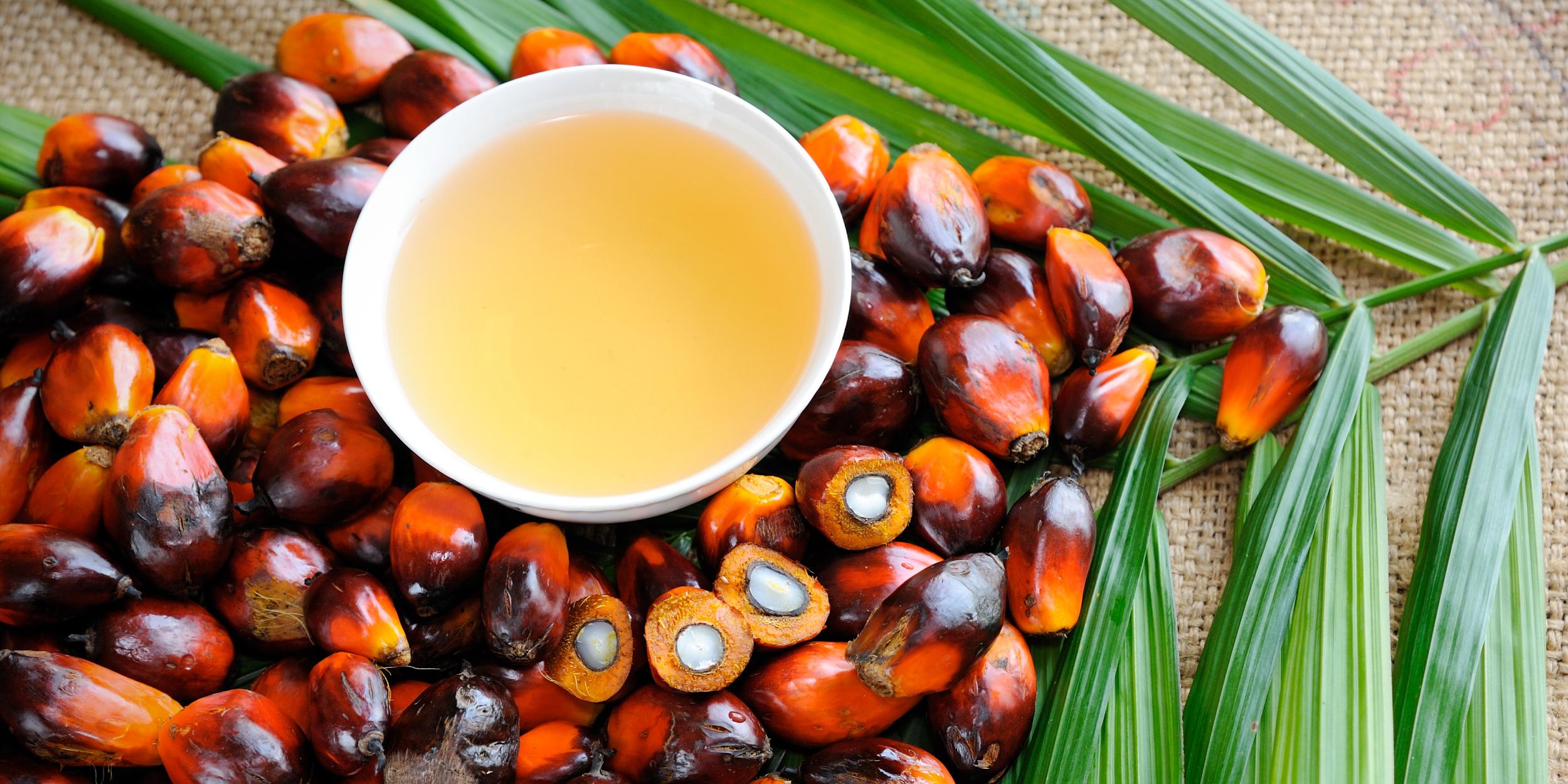 Всё, что вы хотели знать о пальмовом масле, но боялись спросить